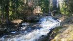 Kuvassa Rakkolanjoen uoma, missä vesi virtaa.