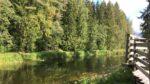 Hiitolanjoki kesällä.
